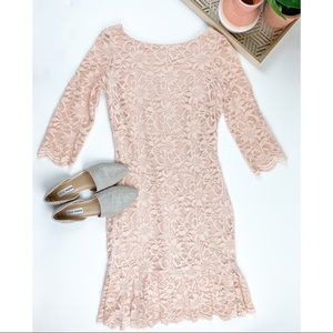 Calvin Klein Light Pink Lace Dress Size 8